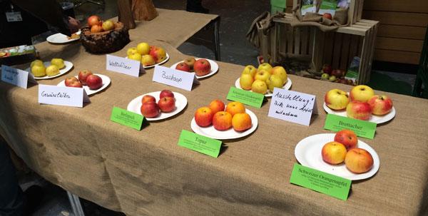Mössinger Äpfel bei der CMT