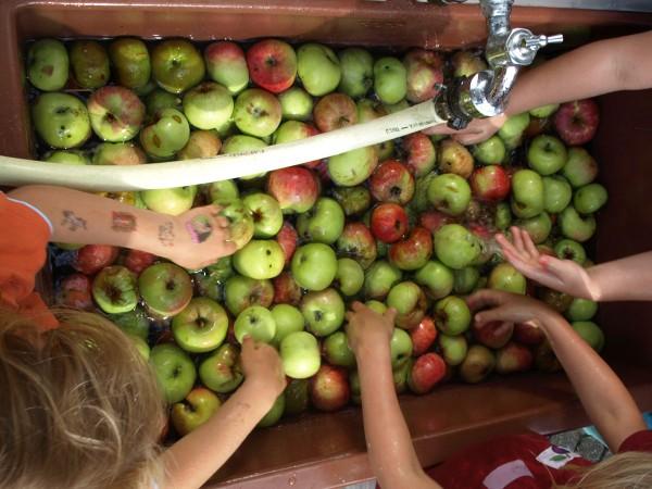 Äpfel waschen.