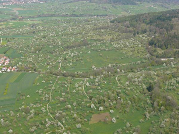 Mössinger Streuobstlandschaft im Frühling (Luftbild: Hans Wener)