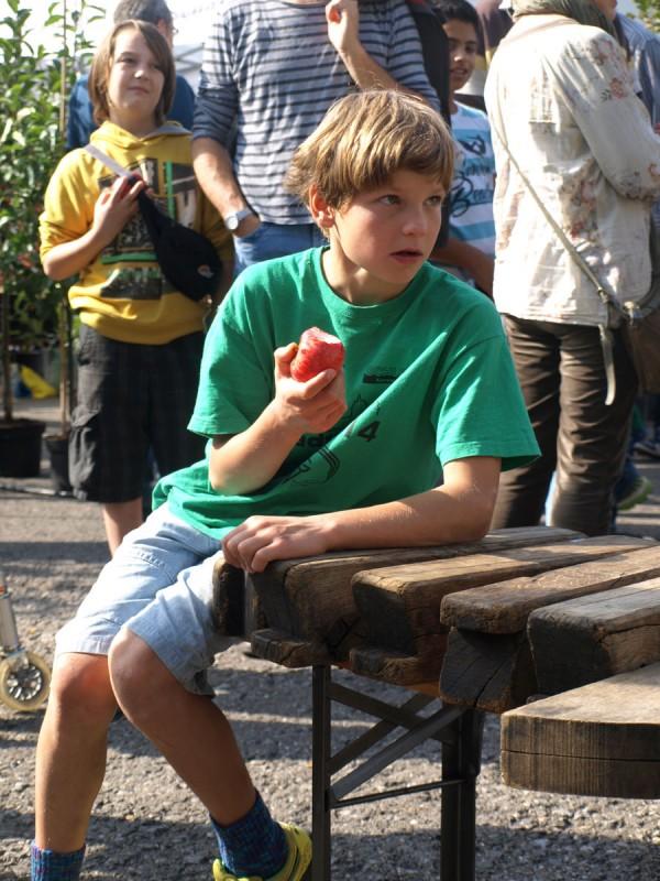 Zuschauen beim Mosten und gleichzeitig Apfel kosten.