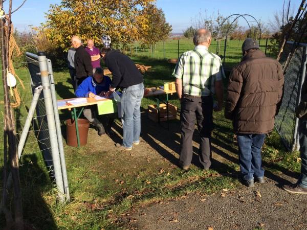 Reibungsloser Ablauf: Baumabholung beim OGV Mössingen