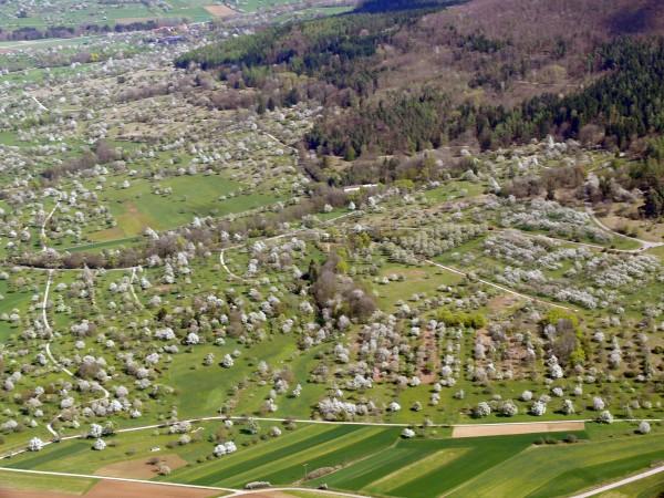 Luftbild: Hans Wener