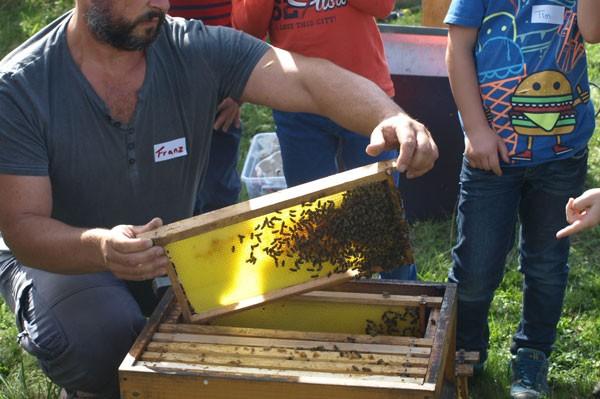 Was machen die Bienen in der Kiste da? Imker Franz erklärt's.