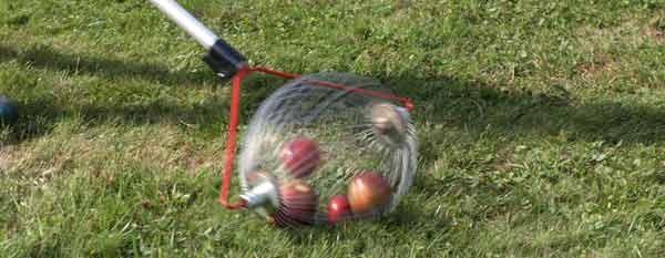 Nebenan saust ein Rollblitz vorbei, um in Windeseile Äpfel zu sammeln.