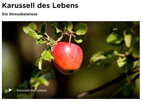 """Dokufilm """"Karussell des Lebens"""""""