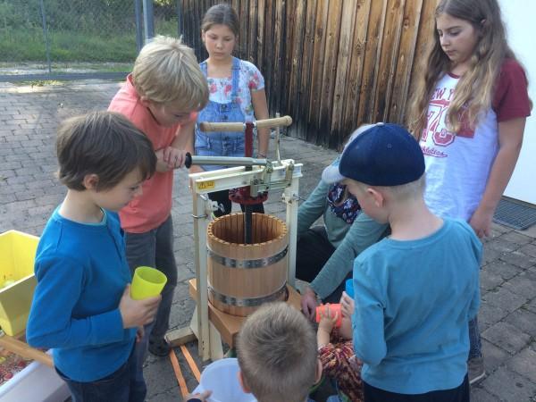 Schwitzen - und gleich wieder Durst löschen! Die Naturkindergruppe beim Saftpressen.
