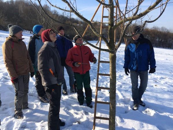 Bei der Baumdiskussion lernt jeder vom anderen.