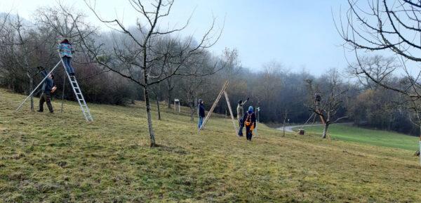Netzwerkler:innen beim Bäumeschneiden