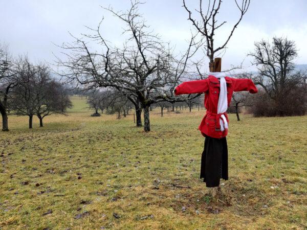 Gut gekleideter Streuobstbaum bei Mössingen