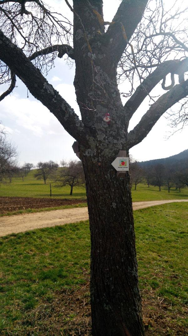 Wichtel im Baum 1