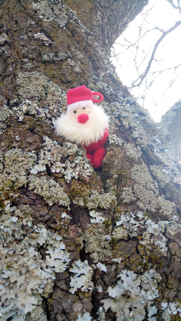 Wichtel im Baum 3